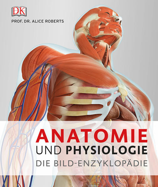 Anatomie und Physiologie - Coverbild