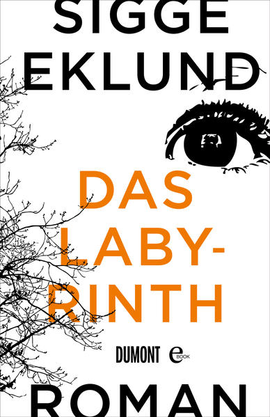 Das Labyrinth - Coverbild