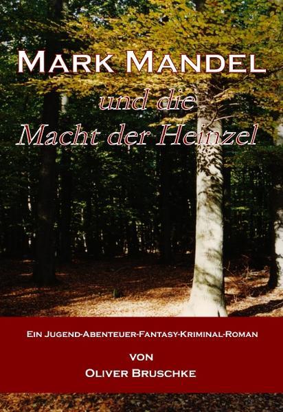 Mark Mandel und die Macht der Heinzel - Coverbild
