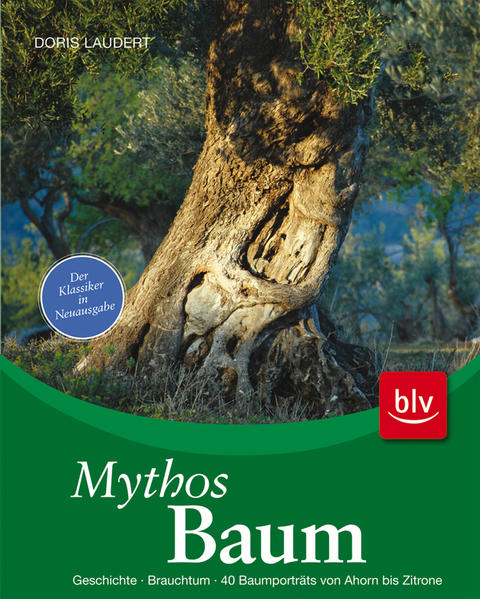 Free TORRENT Mythos Baum