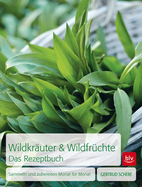 Wildkräuter & Wildfrüchte  Das Rezeptbuch - Coverbild