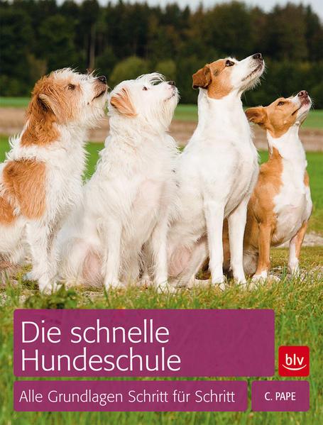 Die schnelle Hundeschule - Coverbild