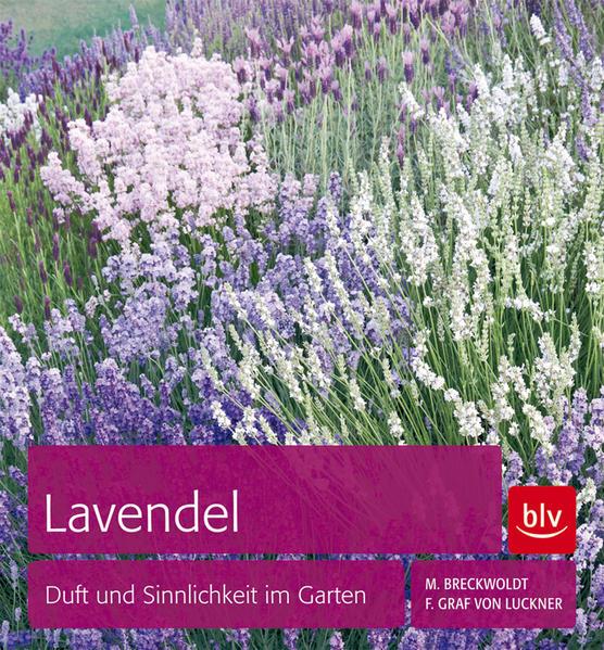 Lavendel - Coverbild