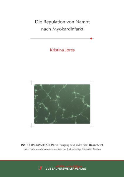 Die Regulation von Nampt nach Myokardinfarkt - Coverbild