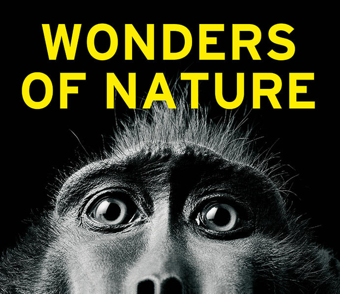 Wonders of Nature - Coverbild