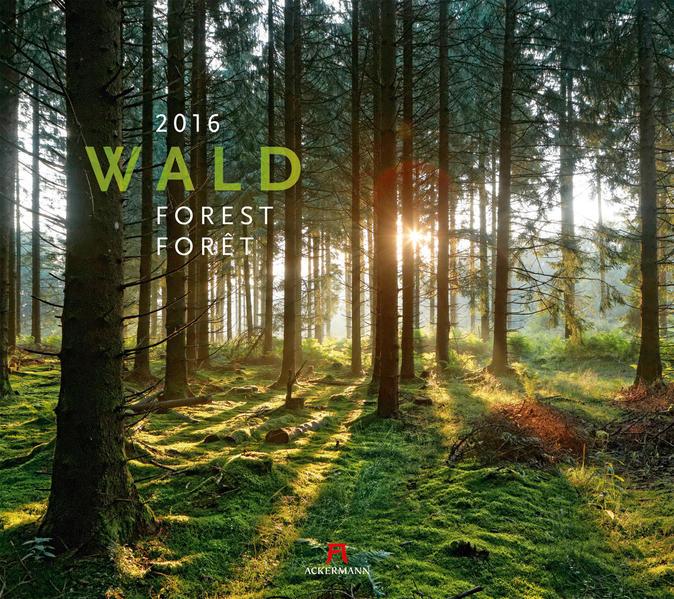 Wald 2016 - Coverbild