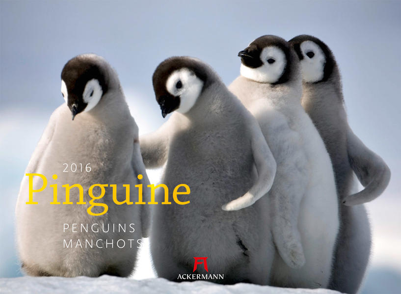 Pinguine 2016 - Coverbild