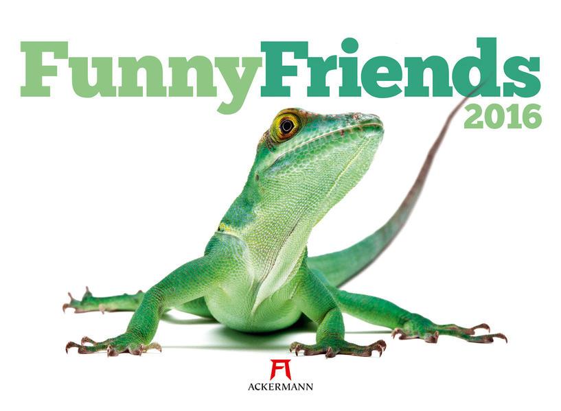 Funny Friends 2016 - Coverbild