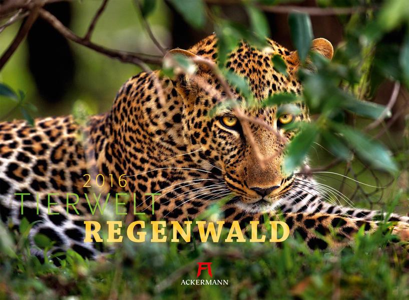 Tierwelt Regenwald 2016 - Coverbild
