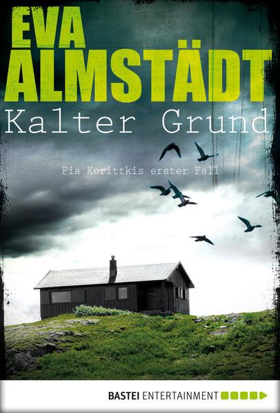 Kalter Grund - Coverbild