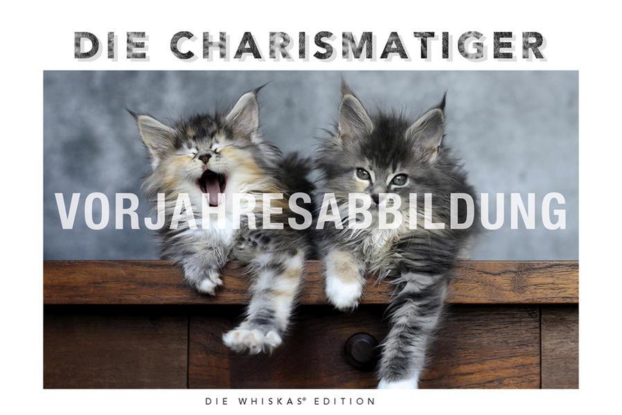 Whiskas Katzenkalender - Kalender 2017 - Coverbild