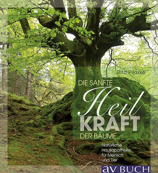 Sanft heilen mit der Kraft der Bäume - Coverbild