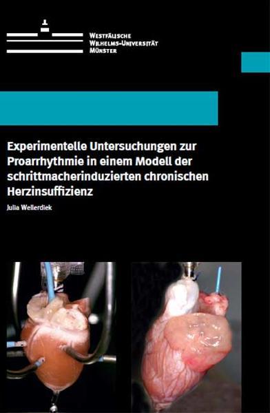 Experimentelle Untersuchungen zur Proarrhythmie in einem Modell der schrittmacherinduzierten chronischen Herzinsuffizienz - Coverbild