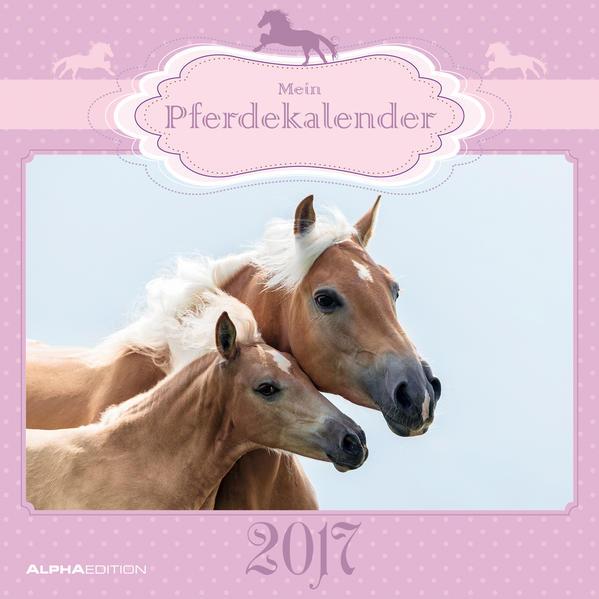 Mein Pferdekalender 2017 - Broschürenkalender PDF Herunterladen