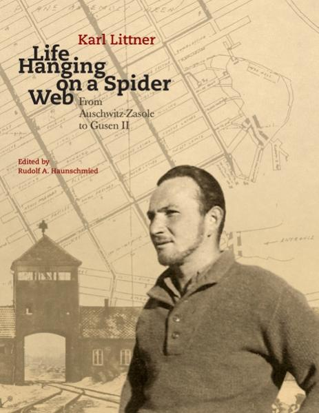 Life Hanging on a Spider Web PDF Download