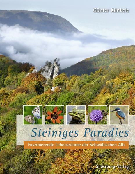 Steiniges Paradies - Coverbild