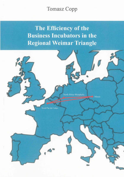 The Efficiency of the Business Incubators in the Regional Weimar Triangle - Coverbild