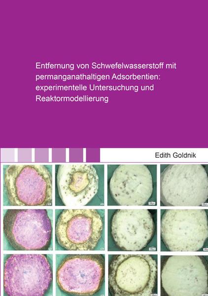 Entfernung von Schwefelwasserstoff mit permanganathaltigen Adsorbentien: experimentelle Untersuchung und Reaktormodellierung - Coverbild