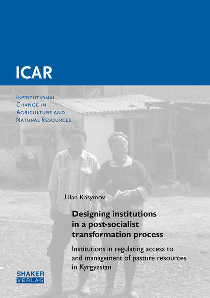 Designing institutions in a post-socialist transformation process - Coverbild