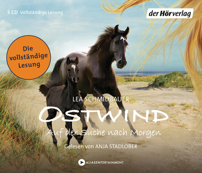 Ostwind - Auf der Suche nach Morgen - Coverbild