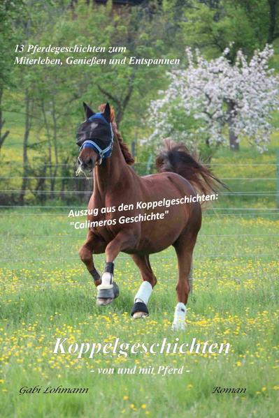 Koppelgeschichten - von und mit Pferd; Calimeros Geschichte - Coverbild