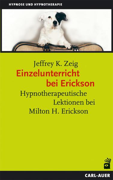 Einzelunterricht bei Erickson - Coverbild