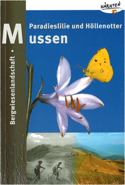 Bergwiesenlandschaft Mussen in Kärnten - Coverbild