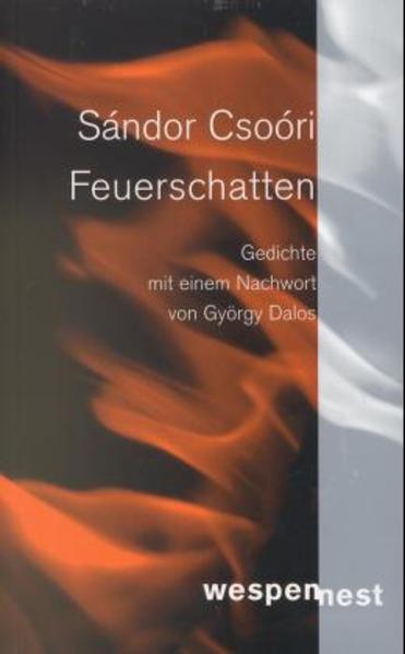 Feuerschatten - Coverbild