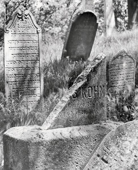 Der jüdische Friedhof von Mikulov / Židovsky Hrbitov v Mikulove - Coverbild