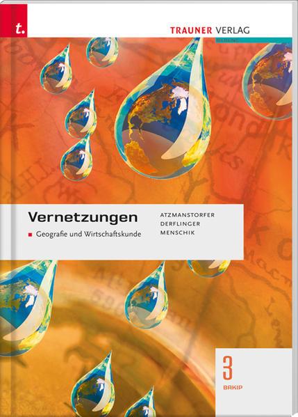 Vernetzungen 3 BAKIP - Coverbild