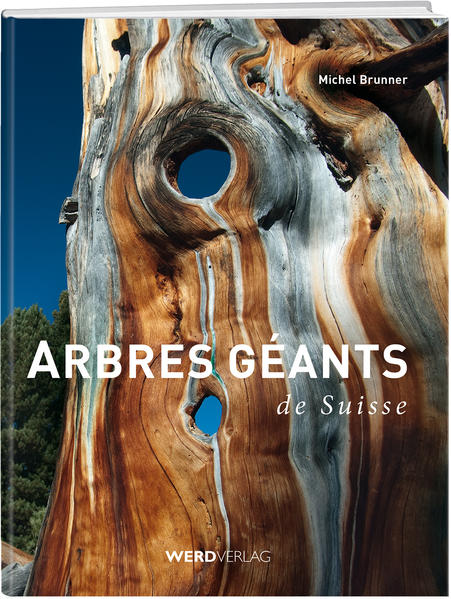 Arbres géants de Suisse - Coverbild