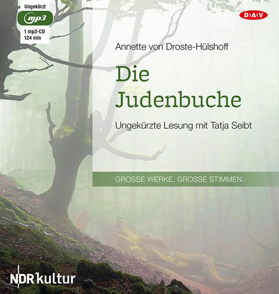 Die Judenbuche - Coverbild