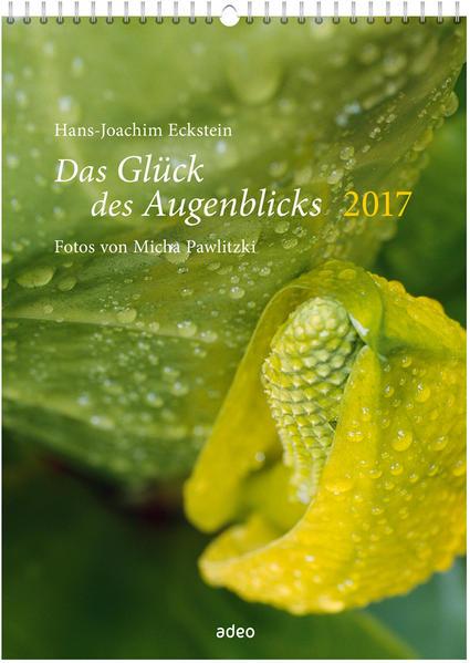 Das Glück des Augenblicks 2017 - Wandkalender * - Coverbild