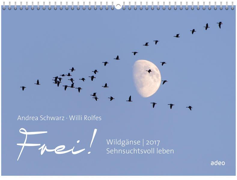 Frei! Wildgänse 2017 - Wandkalender * - Coverbild