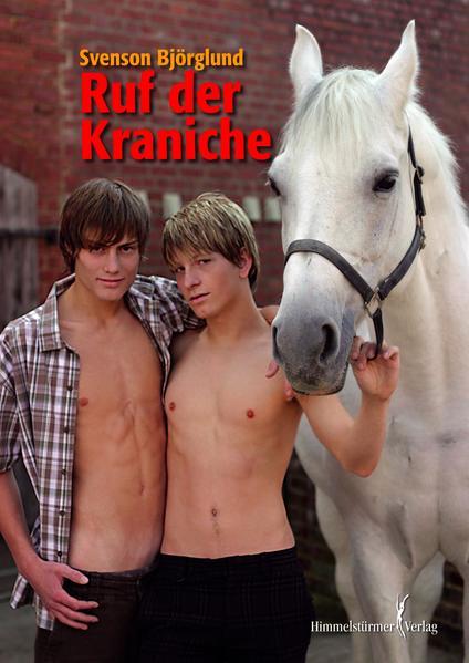 Ruf der Kraniche - Coverbild