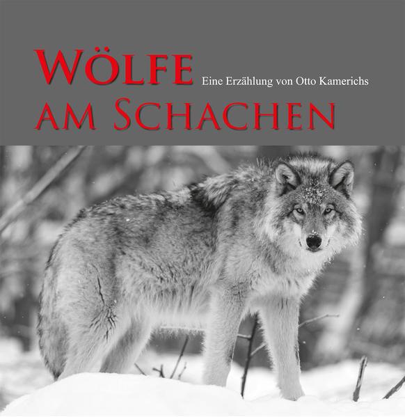 Wölfe am Schachen - Coverbild