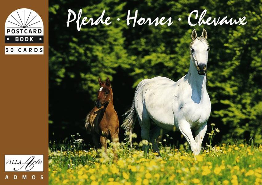 Pferde /Horses /Chevaux - Coverbild