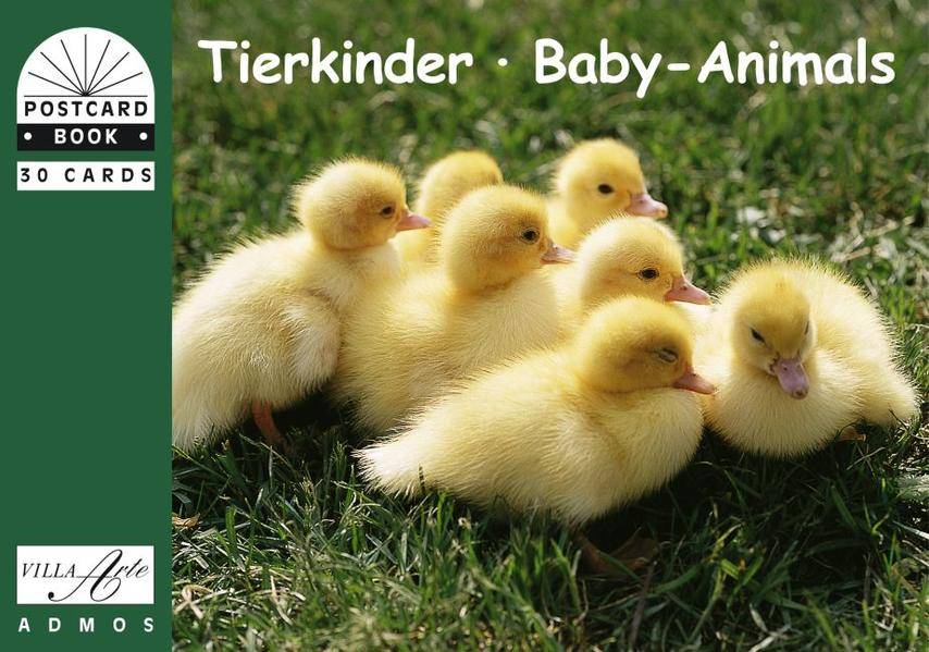 Tierkinder /Baby-Animals - Coverbild
