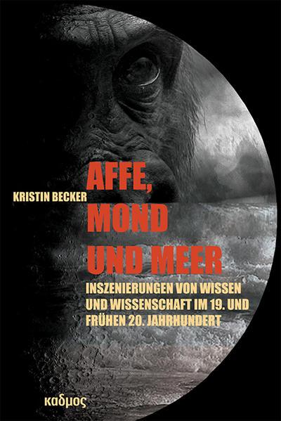 Affe, Mond und Meer von Kristin Becker PDF Download
