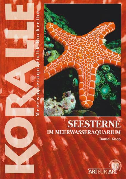 Seesterne - Coverbild