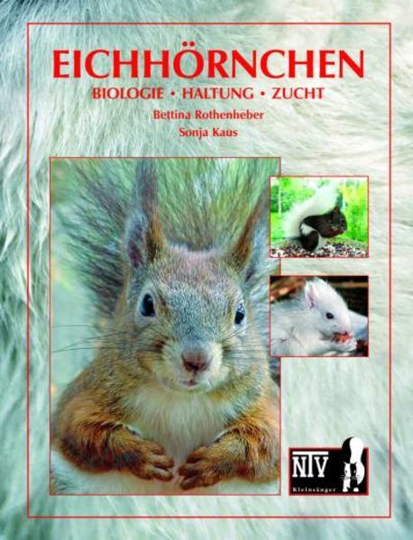 Eichhörnchen PDF Kostenloser Download