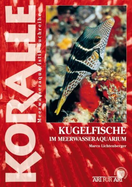 Kugelfische - Coverbild