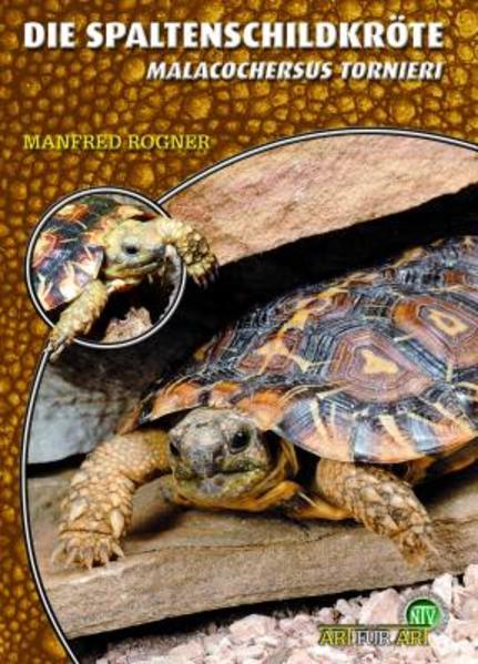 Die Spaltenschildkröte - Coverbild