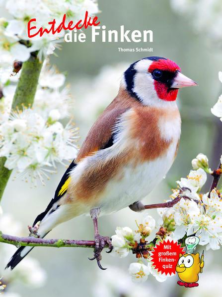 Entdecke die Finken - Coverbild