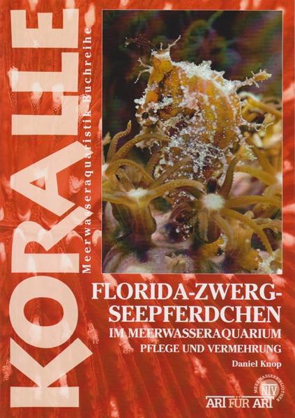 Florida-Zwergseepferdchen im Meerwasseraquarium - Coverbild