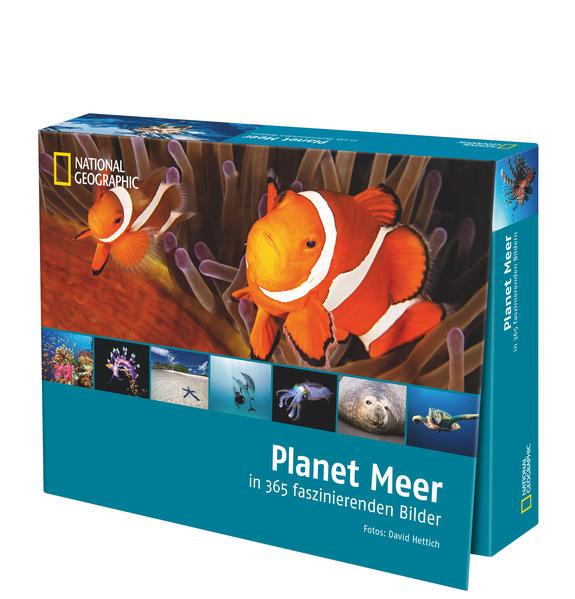 Planet Meer in 365 faszinierenden Bildern - Coverbild