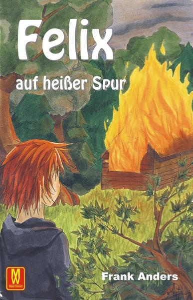 Felix auf heißer Spur - Coverbild
