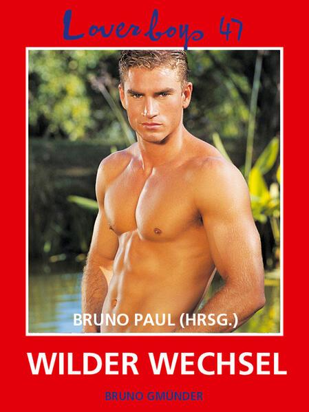 Loverboys 47: Wilder Wechsel - Coverbild