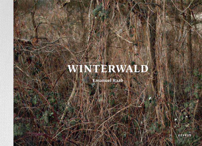 Winterwald - Coverbild