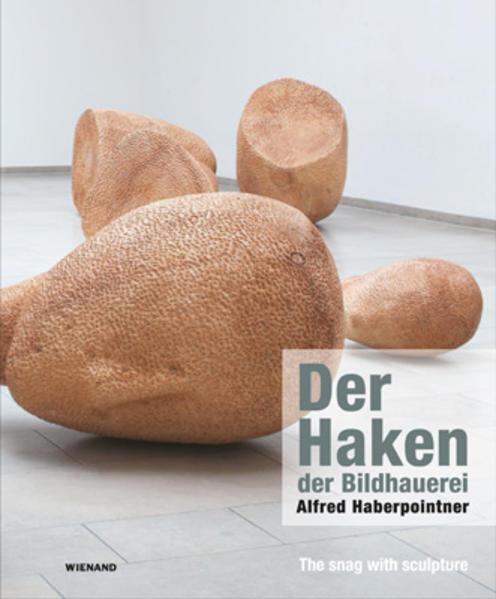 Der Haken der Bildhauerei: Alfred Haberpointner - Coverbild